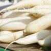 大根の保存方法は冷凍がおすすめ!保存期間と長持ちさせるコツ