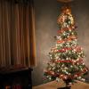 クリスマスツリーに使う木の種類や名前と意味・由来まとめ