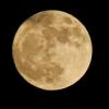 中秋の名月の意味・由来や読み方は?十五夜との違いも説明