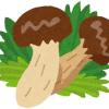 関東近郊で松茸狩りができるのは長野県?おすすめスポットを紹介